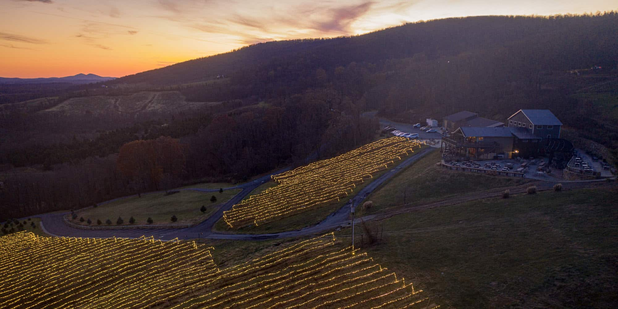 """An aerial view of the """"Lighting of the Vines"""" at Bluemont Vineyard"""